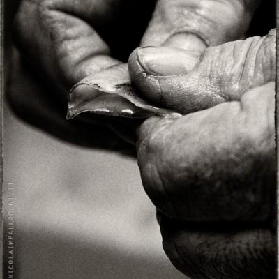 La saggezza nelle mani..