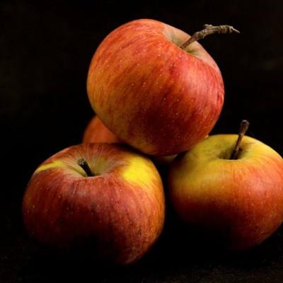 """Antica varietà di mele toscane.. le mele """"Nesta"""" di Cetica, in Casentino!"""