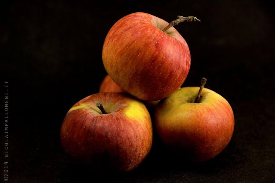 Antica varietà di mele toscane.. le mele